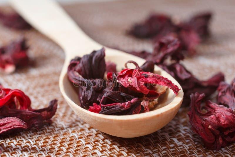 Blumenblätter des Tees auf einer hölzernen Löffelnahaufnahme Makrofoto des roten Haustieres stockfotos