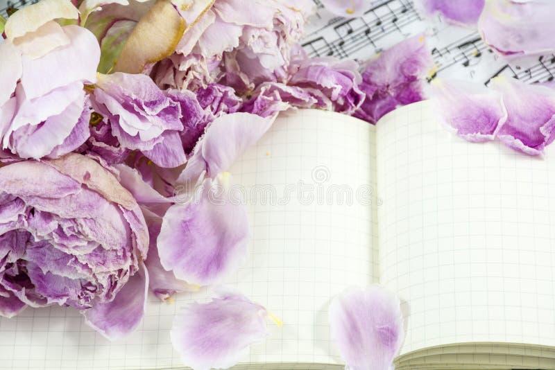 Blumenblätter von Rosa verwelkten Pfingstrosen sind auf dem Notizbuch mit Anmerkungen stockbilder
