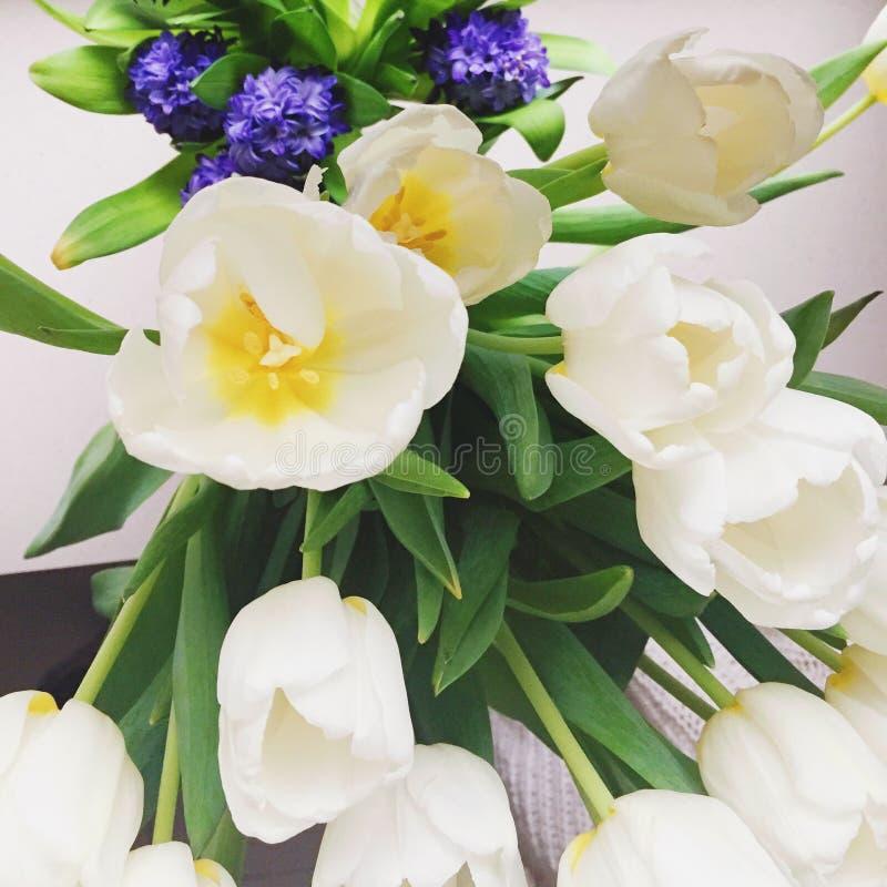 Blumenblüte - Hochzeit, Feiertag und Blumengarten redeten Konzept an stockbilder