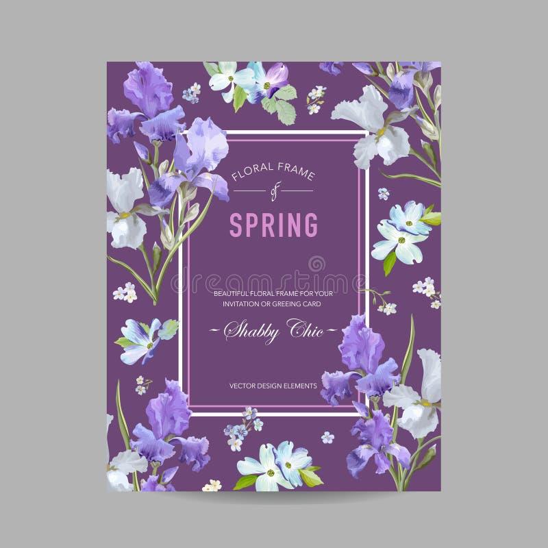 Blumenblüten-Frühlings-Rahmen mit purpurroter Iris Flowers Einladung, Plakat, Gruß-Karten-Flieger-Schablone vektor abbildung