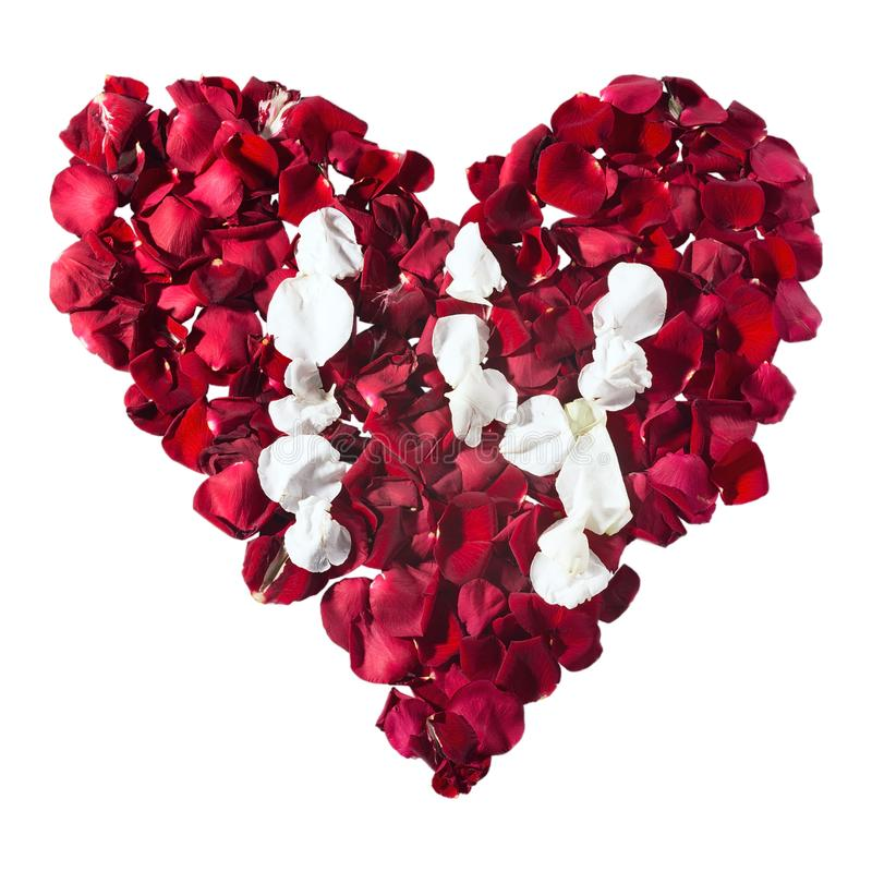 Blumenbl?tter in einer Herzform Die Zahlen f?r den Kalender stockfotos