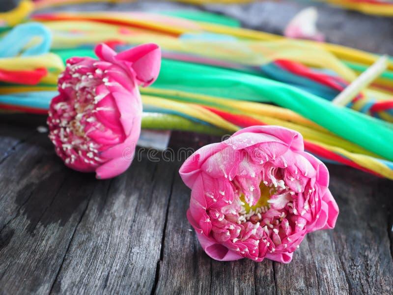 Blumenblatt rosa Lotus For Pray lizenzfreie stockfotos