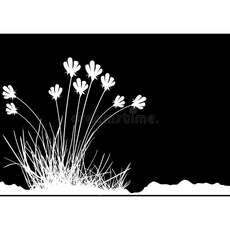 Blumendekoration 02 Kostenlose Stockfotos