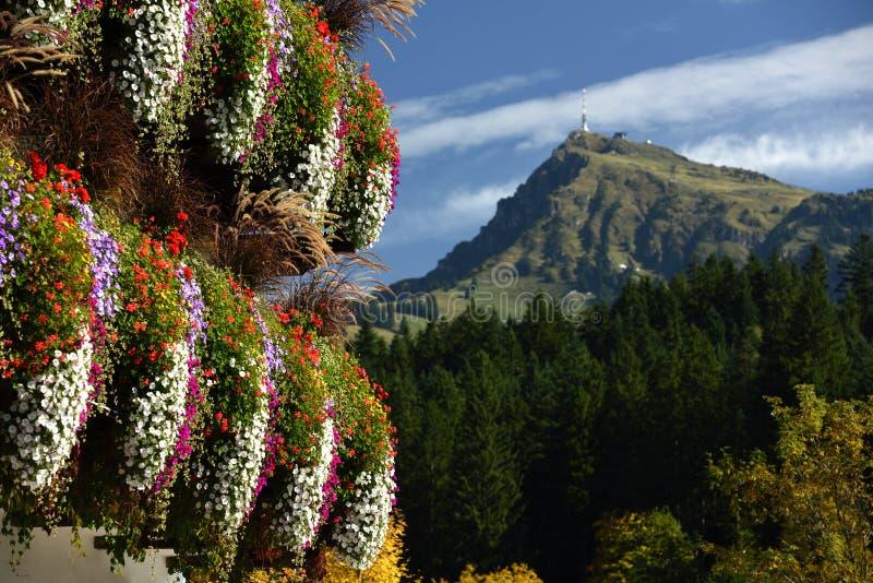 Blumendekoration & Kitzbuheler horn, Tirol, Österreich lizenzfreie stockbilder