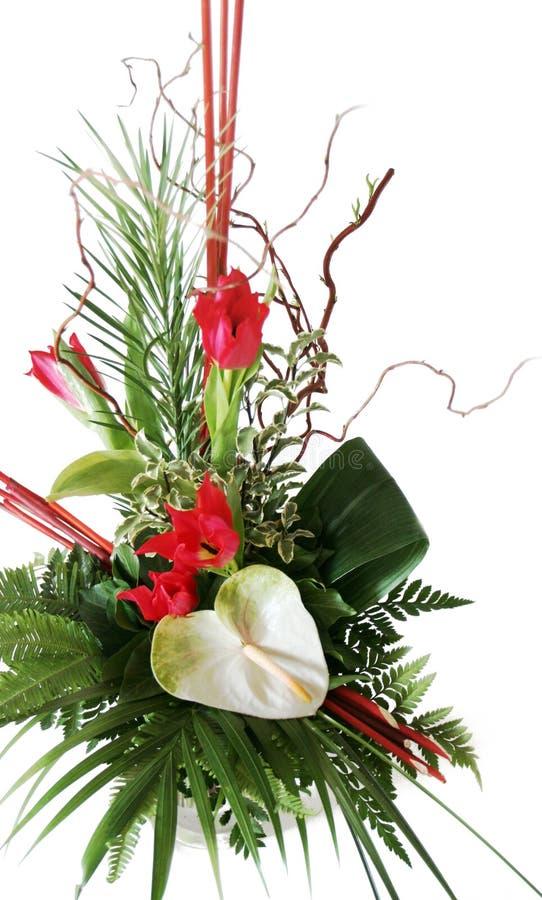 Blumeneinbau stockfotos