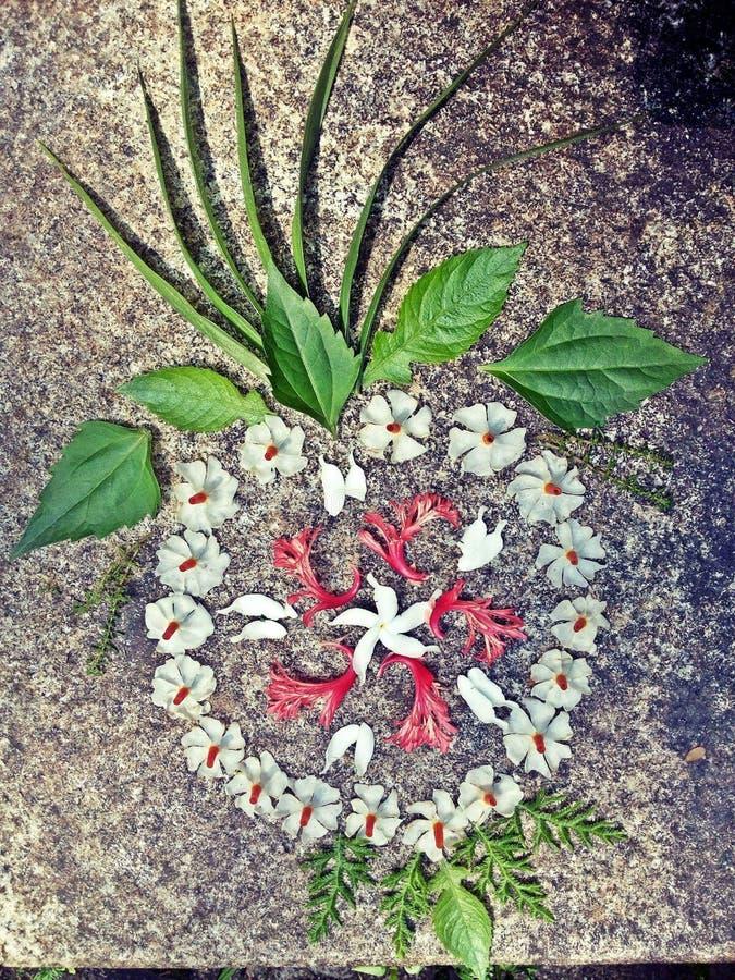 Blumenentwürfe rangoli stockbild