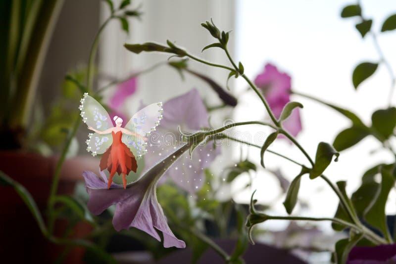Blumenfee mit Schmetterling beflügelt auf Petunienblume stockbild