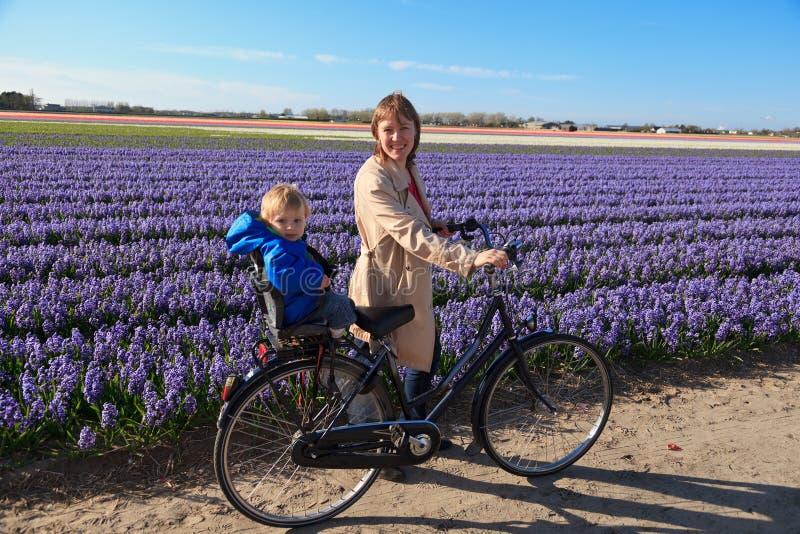 Blumenfelder der Familie im Frühjahr lizenzfreie stockfotografie