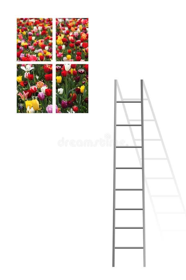Blumenfenster lizenzfreie abbildung