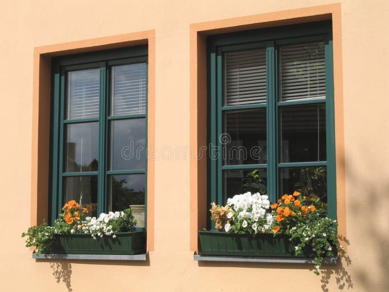 Blumenfenster lizenzfreie stockfotos
