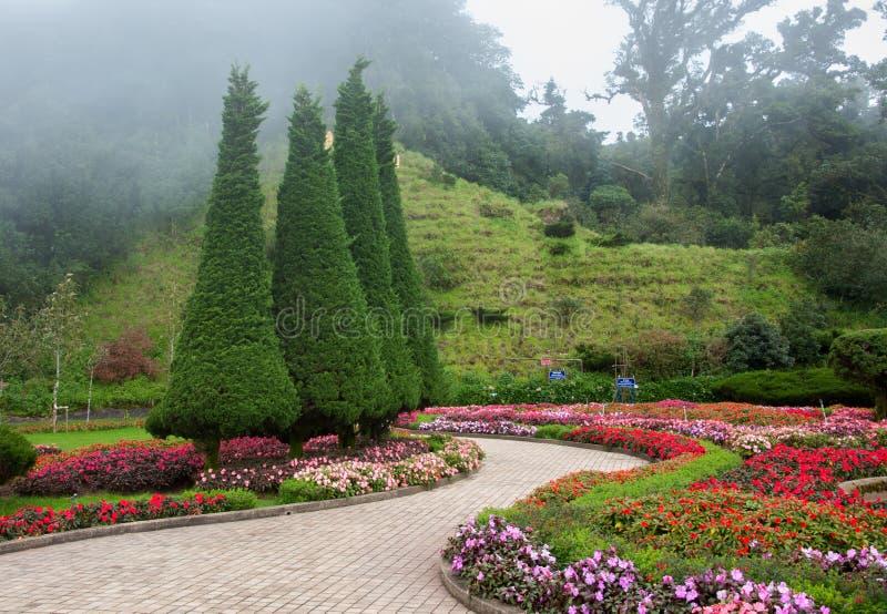Blumengarten und Nebelhintergrund lizenzfreies stockfoto