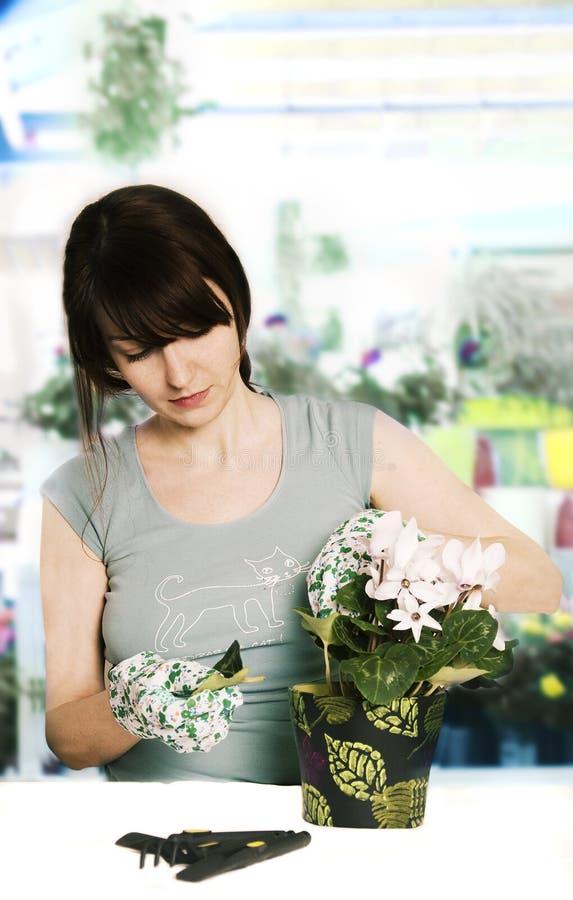Blumenhändler stockbild