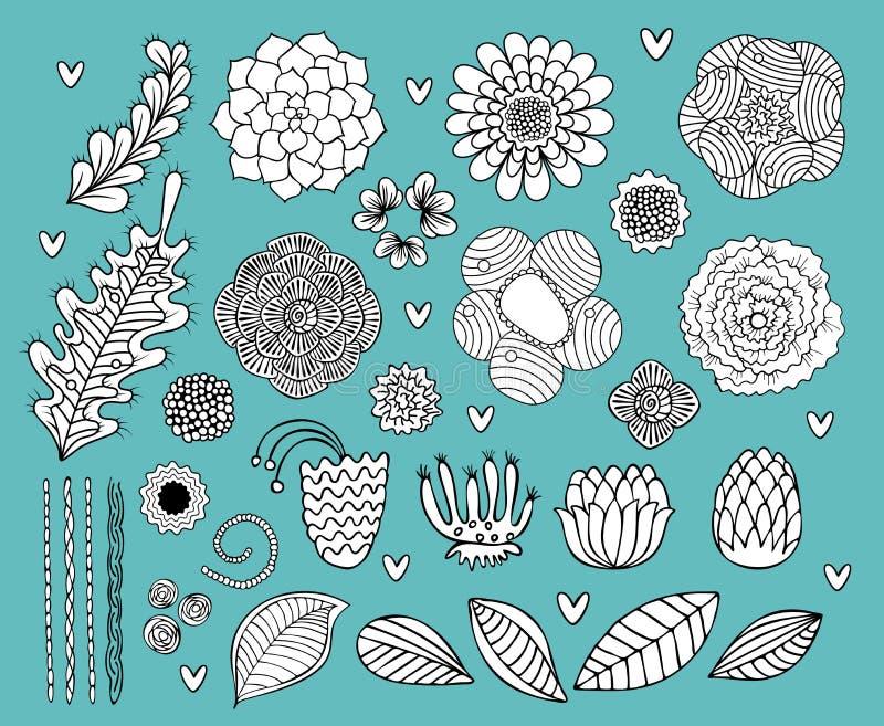 Blumenhand gezeichneter Schwarzweiss-Vektorsatz lizenzfreie abbildung