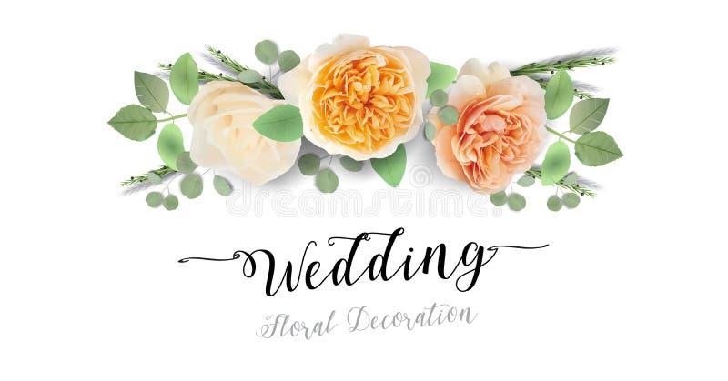 Blumenheiratseinladung, danke - Kartenschablone modisches Entwurfsaquarell süße Juliet Roses lizenzfreie abbildung