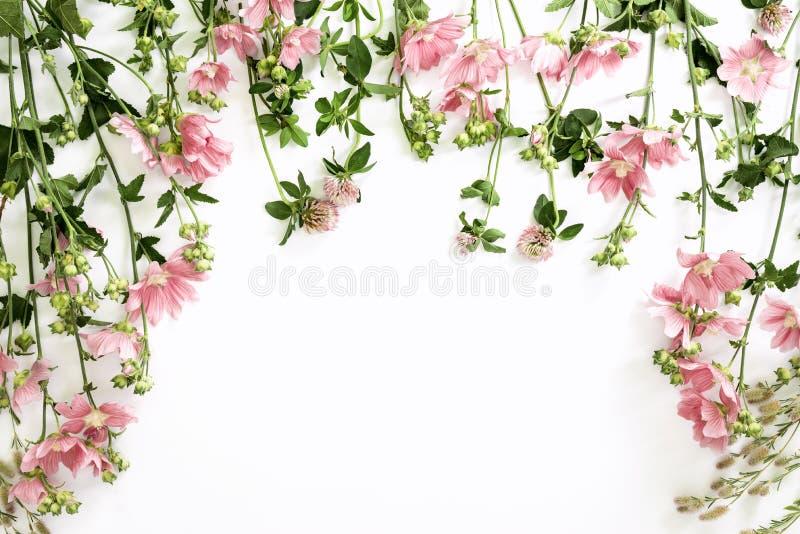 Blumenhintergrund mit einem Raum für einen Text lizenzfreie stockfotos