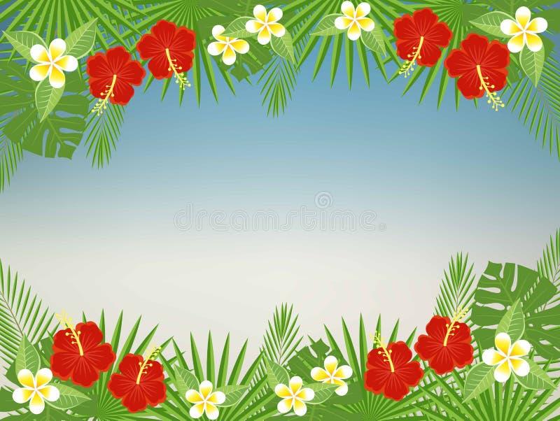 Blumenhintergrund mit Raum für Text Tropische Blumen und Blätter - Hibiscus, Palme, Monstera, Plumeria vektor abbildung