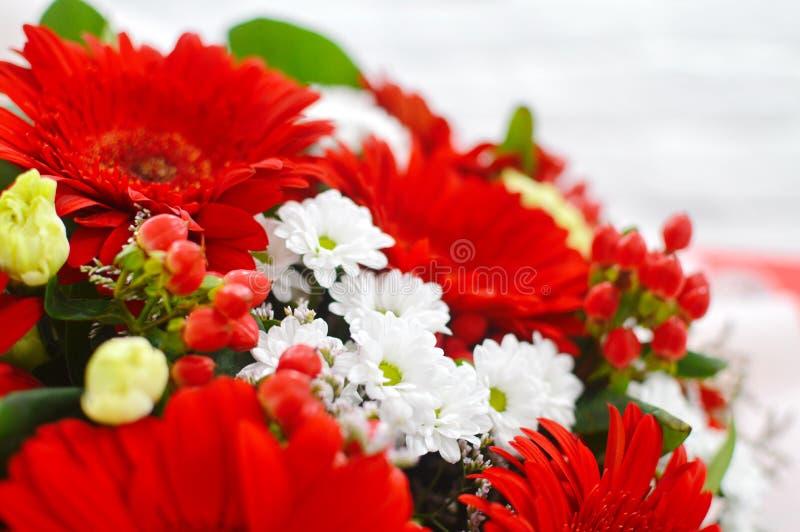 Blumenhintergrund von roten Blumen stockfotos