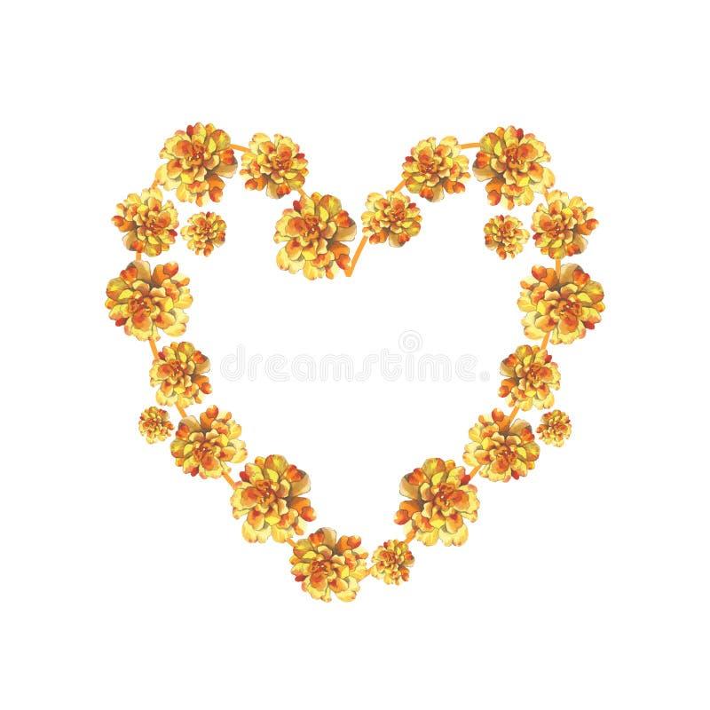 Blumenhintergrundherz-Kranzrahmen gelben Ringelblumenchrysanthemenpetunie Calendula rosafarbener in der Aquarellzeichnung lizenzfreie abbildung