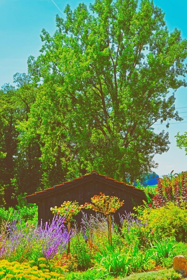 Blumeninnenhof von Yverdon in der Schweiz stockbilder