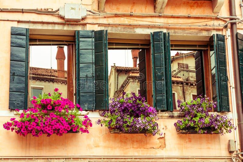 Blumenkästen und -fenster Venedig lizenzfreie stockfotografie