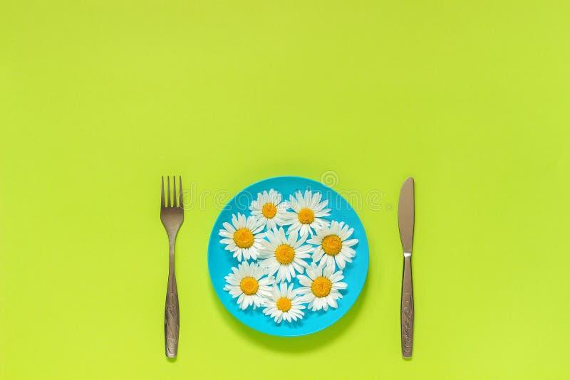 Blumenkamillengänseblümchen auf blauer Platte, Tischbesteckgabelmesser auf Grünbuchhintergrund Konzeptvegetarismus, gesunder Ernä stockfotografie