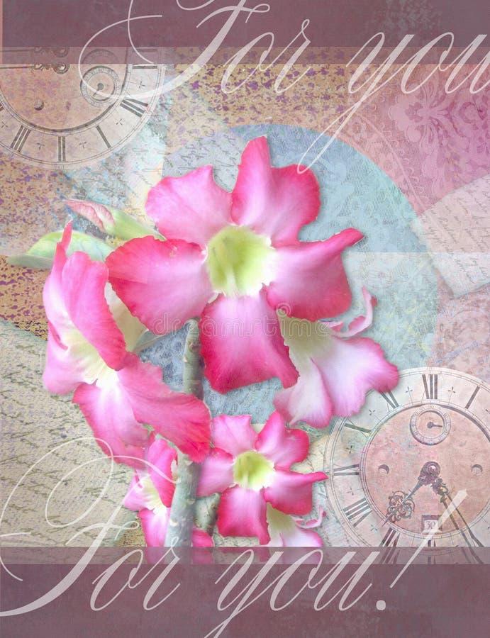Blumenkarte mit schönen Adeniumrosablumen vektor abbildung