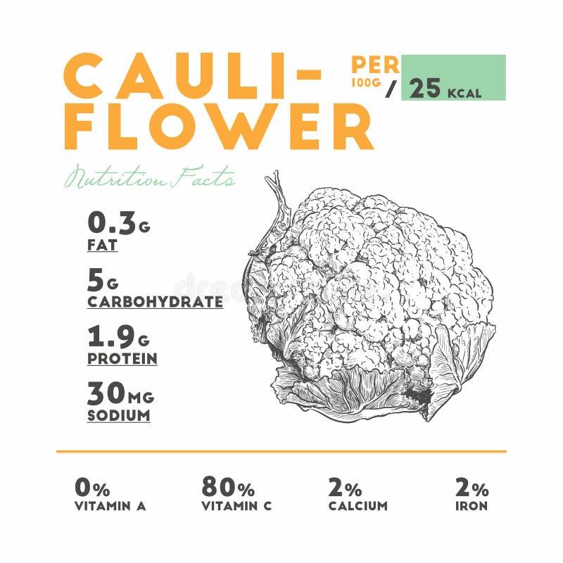 BlumenkohlNutzen für die Gesundheit Auch im corel abgehobenen Betrag lizenzfreie abbildung