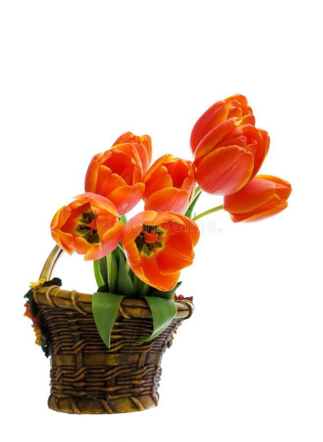 Blumenkorb stockfoto