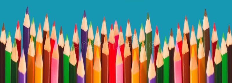 Blumenleistung - Bleistifte Lizenzfreies Stockfoto