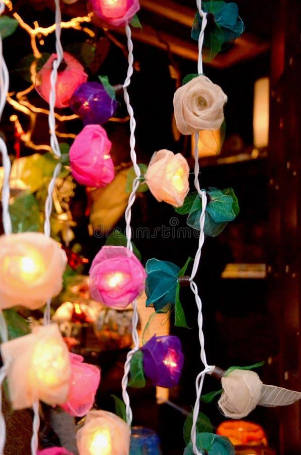 Blumenlicht stockfotografie