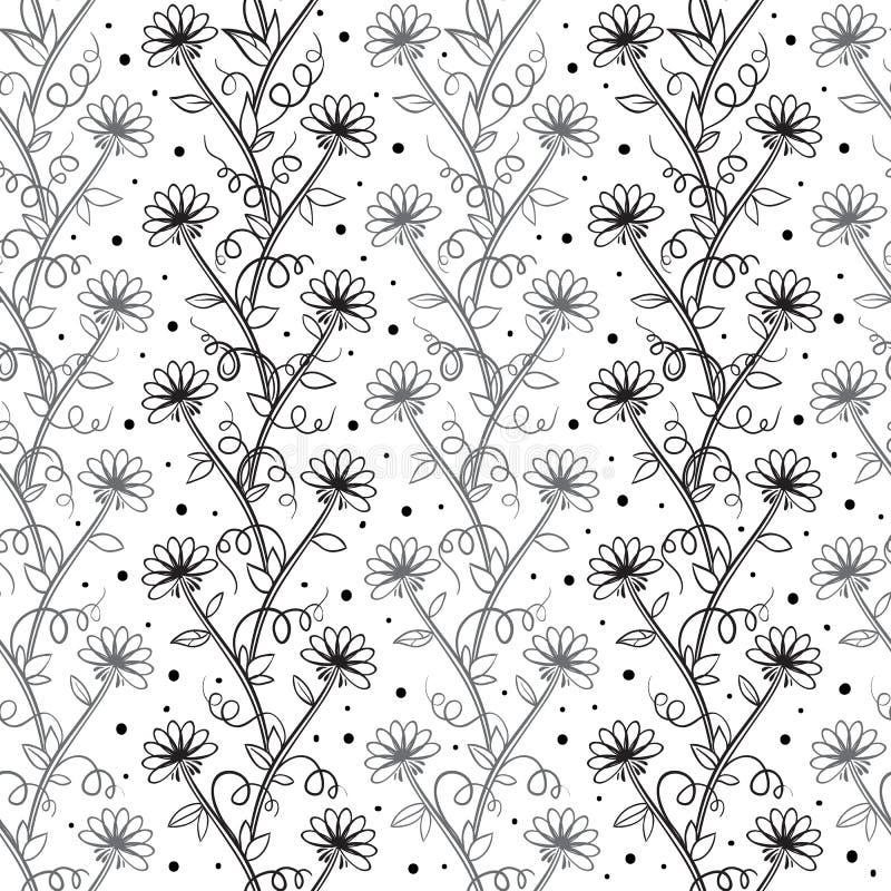 Blumenmuster des schönen Vektors in den Schwarzweiss-Farben Nahtlose Weinlesebeschaffenheit Elegante Schablone für Ihr Design stock abbildung
