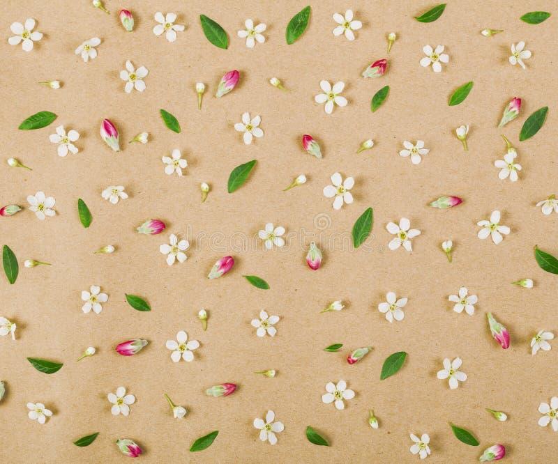 Blumenmuster gemacht von den weißen Frühlingsblumen, von den Grünblättern und von den rosa Knospen auf Hintergrund des braunen Pa stockbilder