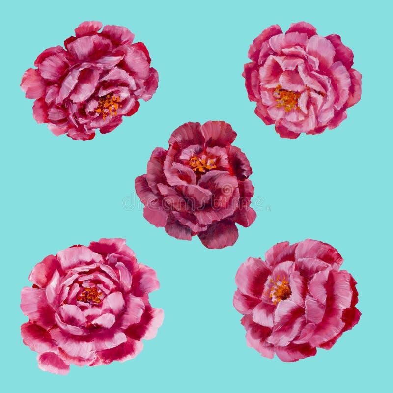 Blumenmuster - rosa Pfingstrosen, Rosenölgemälde lizenzfreie abbildung