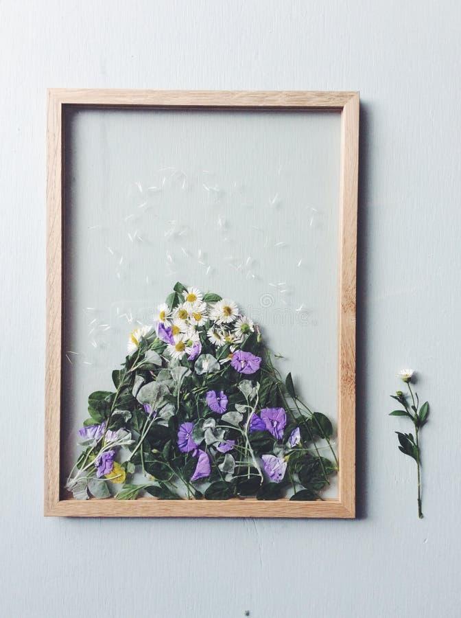 Blumenpresse-Bilderrahmen stockbilder