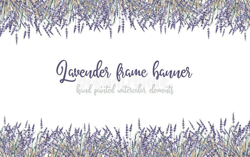 Blumenprov blume der handgemalten Illustration des Lavendelaquarells vektor abbildung