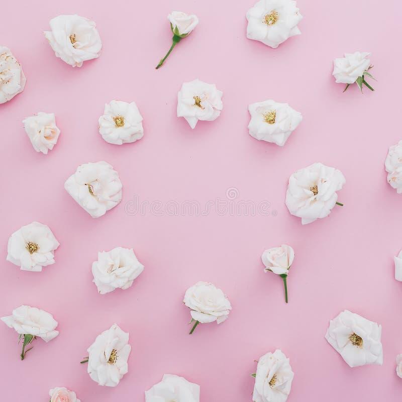 Blumenrahmen Gemacht Von Den Weißen Rosen Auf Rosa Hintergrund ...