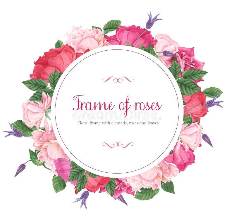 Blumenrahmen mit den rosa und roten Rosen, den purpurroten Klematis und den grünen Blättern, Aquarellmalerei lizenzfreie abbildung