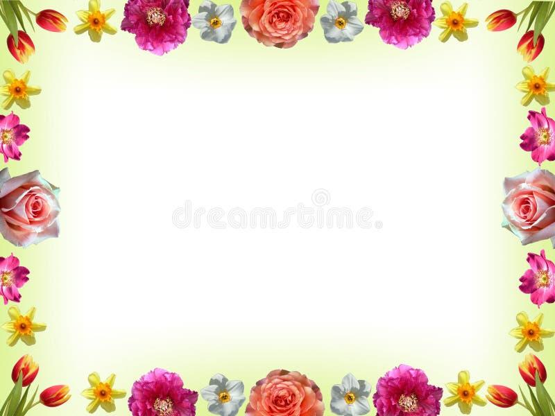 Blumenrahmen Mit Frühlingsblumen Stockbild - Bild von einladung ...