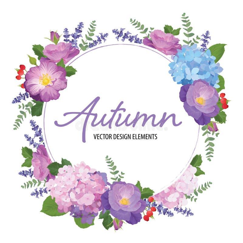 Blumenrahmen mit Herbsthortensieblumen, rosafarben und Lavendel auf weißem Hintergrund vektor abbildung