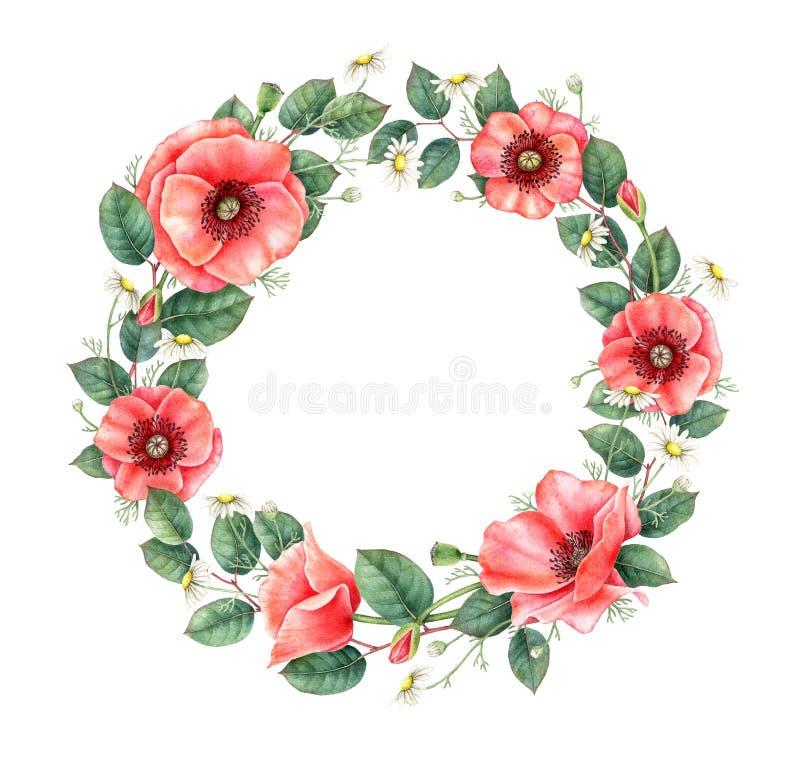 Blumenrahmen mit Mohnblume und Kamille Hand gezeichnetes Aquarellgestaltungselement lizenzfreie abbildung
