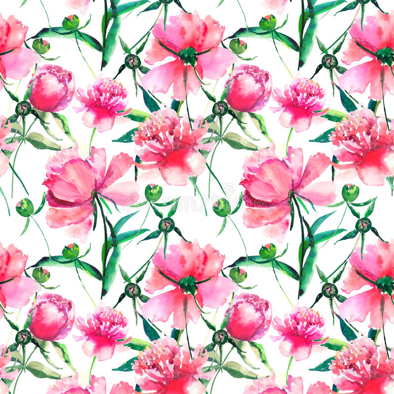 Blumenrosa Kräuterpfingstrose des hellen netten zarten reizenden schönen wunderbaren Frühlinges mit Grünblatt- und -knospenaquare stock abbildung