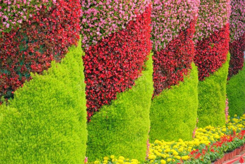 Blumensäulen stockfotografie