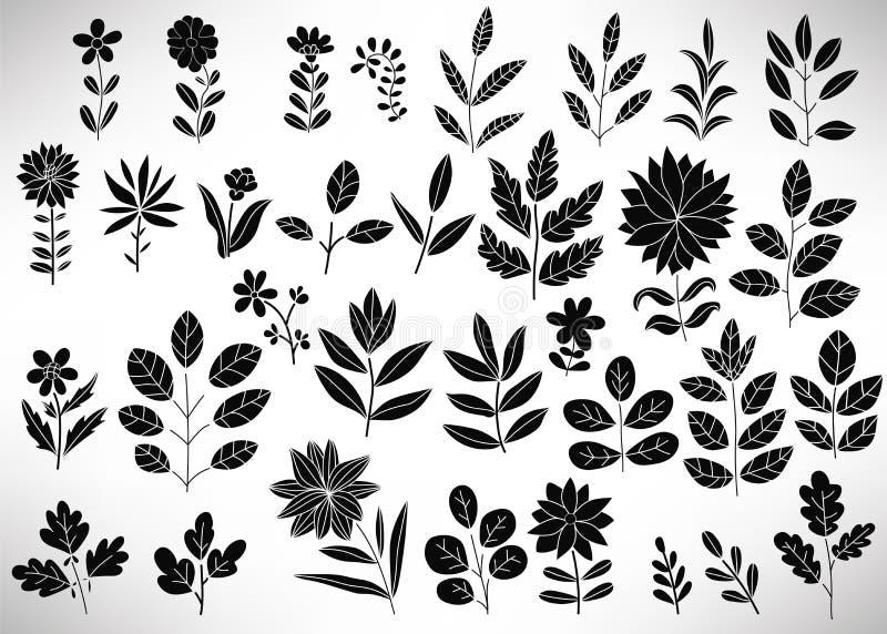 Blumensatz schwarze Handgezogene Florenelemente, Baumast, Busch, Anlage, Blätter, Blumen, Niederlassungen, Blumenblätter lokalisi lizenzfreie abbildung