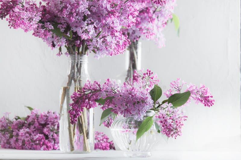 Blumensträuße der üppigen frischen purpurroten Flieder in den Glasvasen lizenzfreie stockfotos
