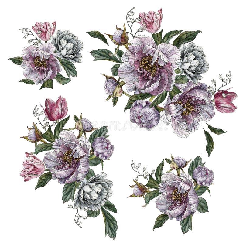 Blumensträuße der Blumen Blumen stellten von den Aquarellpfingstrosen, -rosen und -tulpen ein lizenzfreie abbildung