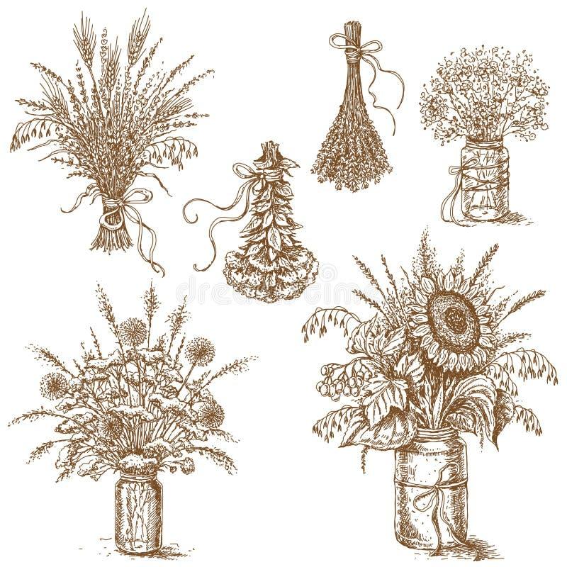 Blumensträuße von Blumen, von Getreide und von getrockneten Kräutern in der rustikalen Art stock abbildung