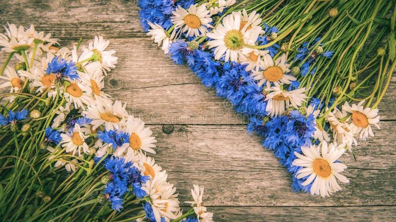 Blumenstr?u?e von sch?nen wilden Blumen von G?nsebl?mchen und von Kornblumen auf einem h?lzernen alten Hintergrund Kopieren Sie P lizenzfreie stockfotos