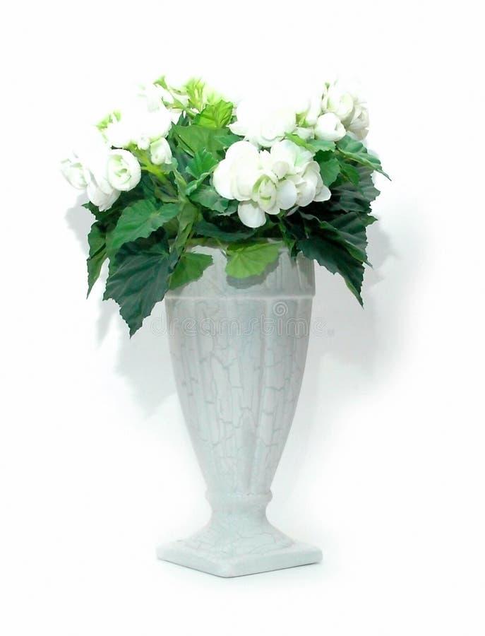 Download Blumenstrauß stockbild. Bild von blumenhändler, stieg, weiß - 34575