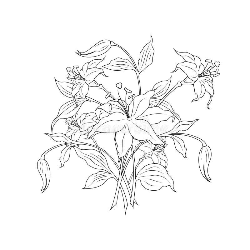 Blumenstrauß der Blumen in den Schwarzweiss-Farben, Vektorillustratio vektor abbildung