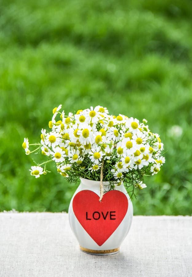 Blumenstrauß der Feldkamille im Vase und im roten Herzen Herzpostkarte und Blumenstrauß von camomiles Romantisches Konzept lizenzfreie stockfotografie